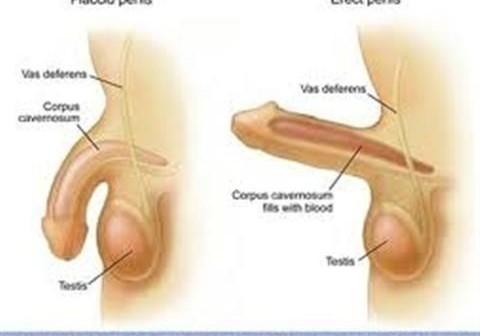 Phương pháp điều trị liệt dương tại nhà dành cho các quý ông