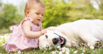 Phòng tránh nguy cơ gây dị ứng ở trẻ nhỏ